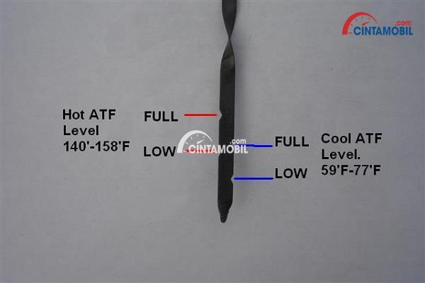dipstick cairan transmisi yang memperlihatkan kekurangan cairan transmisi