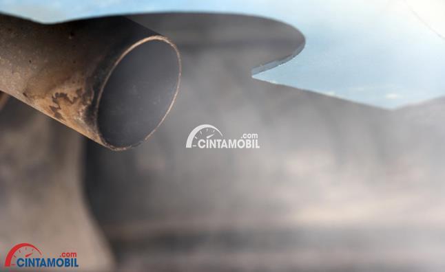 Gambar yang menunjukan asap berwarna abu-abu yang keluar dari knalpot mobil