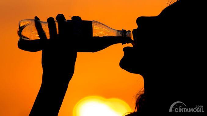 Gambar yang menunjukan seorang wanita yang sedang minum air putih ketika cuaca panas