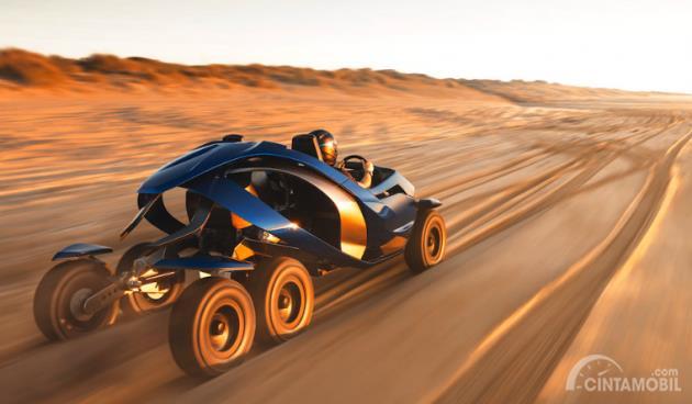 Gambar Ferox Azaris di gurun pasir