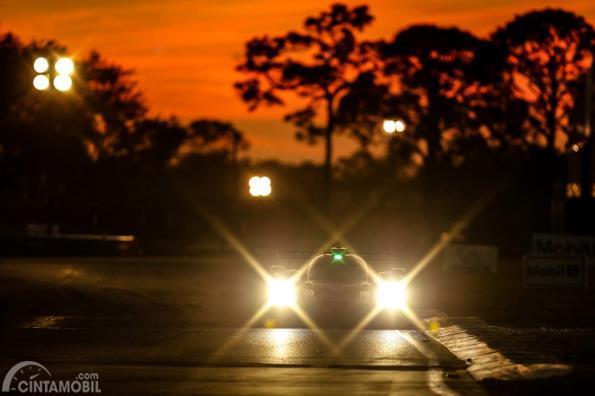 Whelen Engineering Racing #31