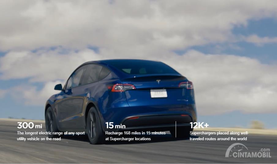 tampilan belakang Tesla Model Y 2019 berwarna biru