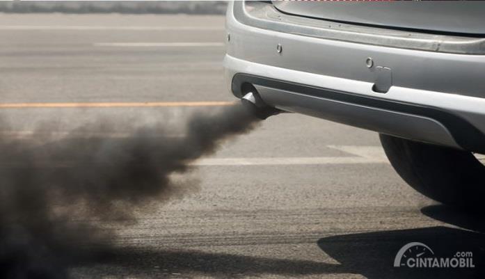 polusi yang dikeluarkan oleh knalpot mobil berwarna abu-abu