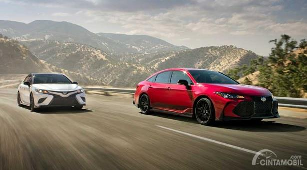 Toyota Avalon TRD 2020 bersanding dengan Toyota Camry TRD 2020