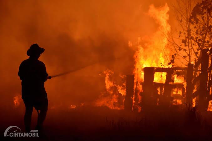 Kebakaran hutan Australia di negara bagian New South Wales