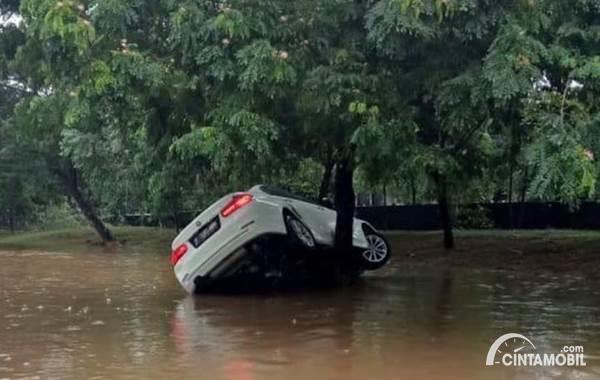 BMW tersangkut di pohon