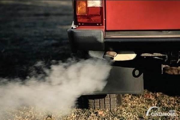 Knalpot Mobil Diesel Keluar Asap Putih? Cek Bagian Ini
