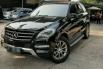 Dijual cepat Mercedes-Benz M-Class ML 270 2013, DKI Jakarta 2