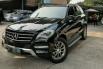 Dijual mobil Mercedes-Benz M-Class ML 270 2013, DKI Jakarta 4