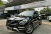Jual Mobil Mercedes-Benz M-Class ML 270 2013 di DKI Jakarta 1