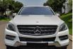 Jual cepat Mercedes-Benz M-Class ML 250 2016, Tangerang Selatan 4