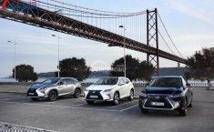 Harga Lexus RX Januari 2020: Semua Variannya Ditawarkan Asuransi Selama 20 Tahun