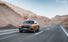 Preview Audi Q8 2019