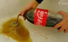 Minuman Soda dan Tembakau, Solusi Praktis Menghilangkan Jamur pada Kaca Mobil