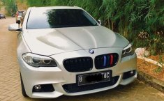 BMW 523i  2011 DVG.WIS.Entities.Color