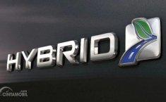 Teknologi Semakin Berkembang, Muncul Mild Hybrid. Apa Bedanya?