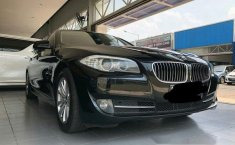 BMW 523i  2010 DVG.WIS.Entities.Color