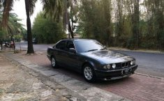 BMW 518i  1992 DVG.WIS.Entities.Color