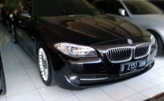 BMW 520d  2011 DVG.WIS.Entities.Color