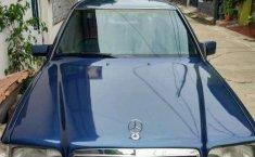 Mercedes-Benz E220  1995 DVG.WIS.Entities.Color