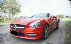 Mercedes-Benz SLK200  2011 DVG.WIS.Entities.Color