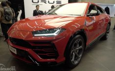 Supercar Untuk Keluarga Dari Lamborghini Resmi Mengaspal di Indonesia, Harganya Capai Rp 8,5 Miliar