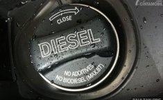 "Mesin Diesel Modern ""Dipaksa"" Minum B100, Apa Efeknya?"