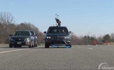 Perbedaan Sistem Pengereman Otomatis, BMW X1 'Bunuh' 3 Boneka Percobaan