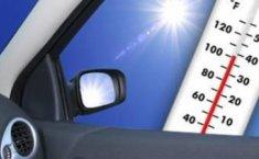 Suhu Kabin Mobil Bisa Mengancam Nyawa, Apa Penyebabnya?