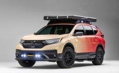 Honda Pamerkan 2 CR-V Berpenampilan Kekar Di SEMA 2019