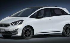 Honda Jazz dan Freed Modulo X Concept Akan Tampil Perdana di Tokyo Auto Salon 2020