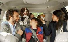 Pamer Diskon, Ini Dia 3 Mobil Keluarga Terbaik Toyota Keluaran 2019