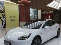 2019 Tesla Model 3 Standard Range Plus White on Black