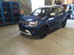 DP 19jtn, Promo Mobil Suzuki Ignis, Harga Mobil Suzuki Ignis, Kredit Mobil Suzuki Ignis