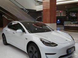 Brand New 2020 Tesla Model 3 Standard Range Plus White on Black