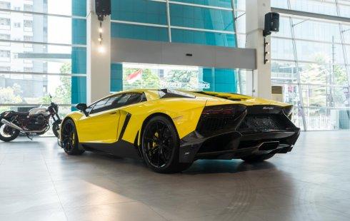 2013 Lamborghini Aventador 50th Anniversario LP720-4