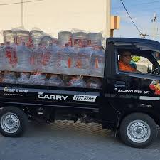 "Penawaran Spesial New Carry Pick UP ""Ngabisin Stock 2020"""