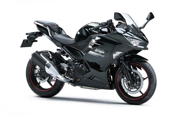 Kawasaki Ninja 250 Metallic Carbon Gray