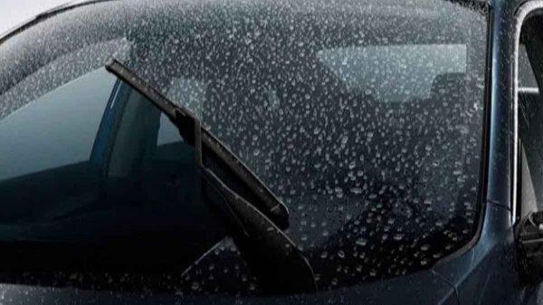 pentingnya membersihkan jamur kaca di mobil