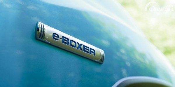 Gambar emblem eBoxer Subaru